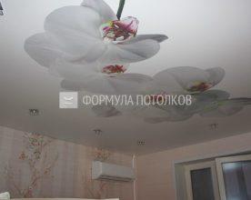 http://www.forpotoloc.ru/wp-content/uploads/2016/06/img_7743_result_1.jpg