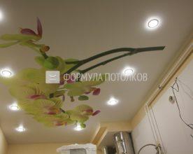 http://www.forpotoloc.ru/wp-content/uploads/2016/06/img_7813_result_1-1.jpg